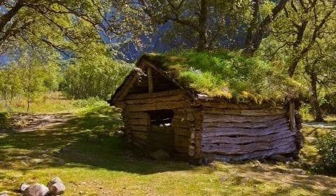 11Ancienne grange en bois avec de l'herbe sur le toit