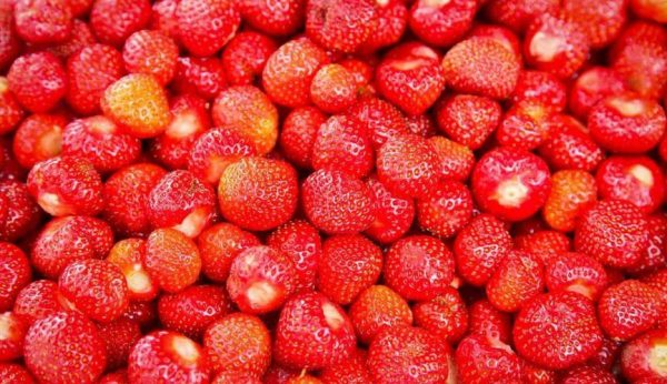 Fresh red strawberries from Valldal, on the road from Ålesund to the fjords and trolls
