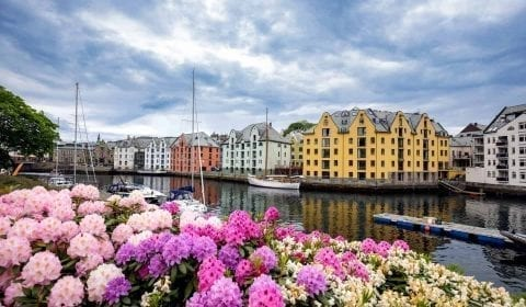 Yellow, red and white Art Nouveau buildings at the Brosund canal, pink and white flowers on the waterside