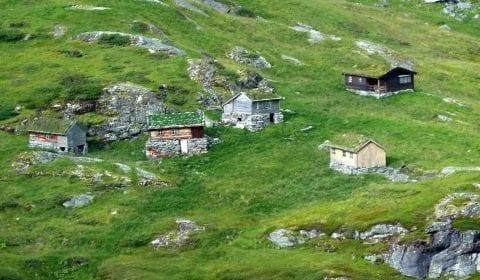 Casas de madera con hierba en los tejados en las verdes montañas en las afueras de Geiranger