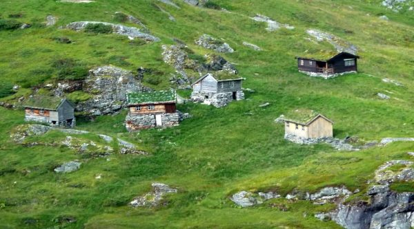 Wooden houses with grass on the rooftops in the green mountains outside Geiranger