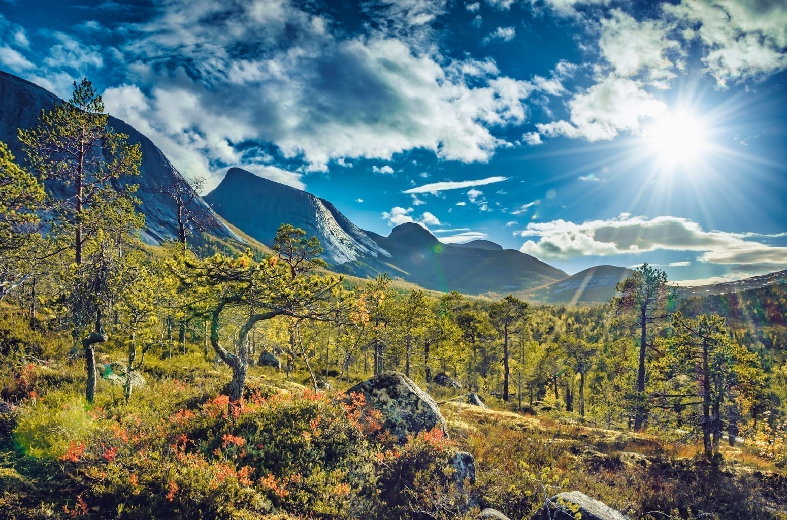 Scenic view into the Efjorddalen valley wilderness in Norway in warm autumn light with Kuglhornet summit in background.